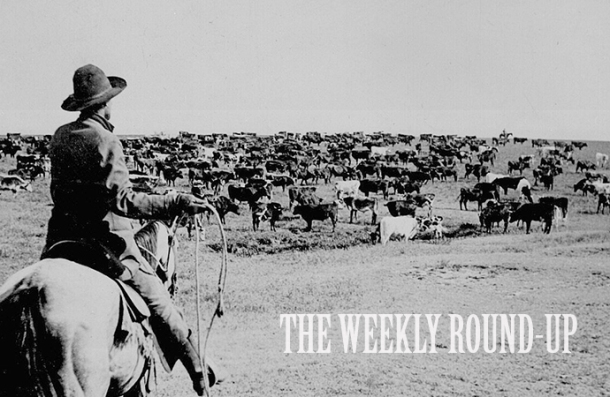 The Weekly Round-Up