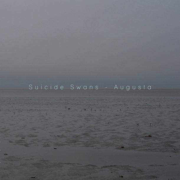SUICIDE SWANS Augusta web 3000