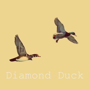 PTW PREMIERE: Diamond Duck EP